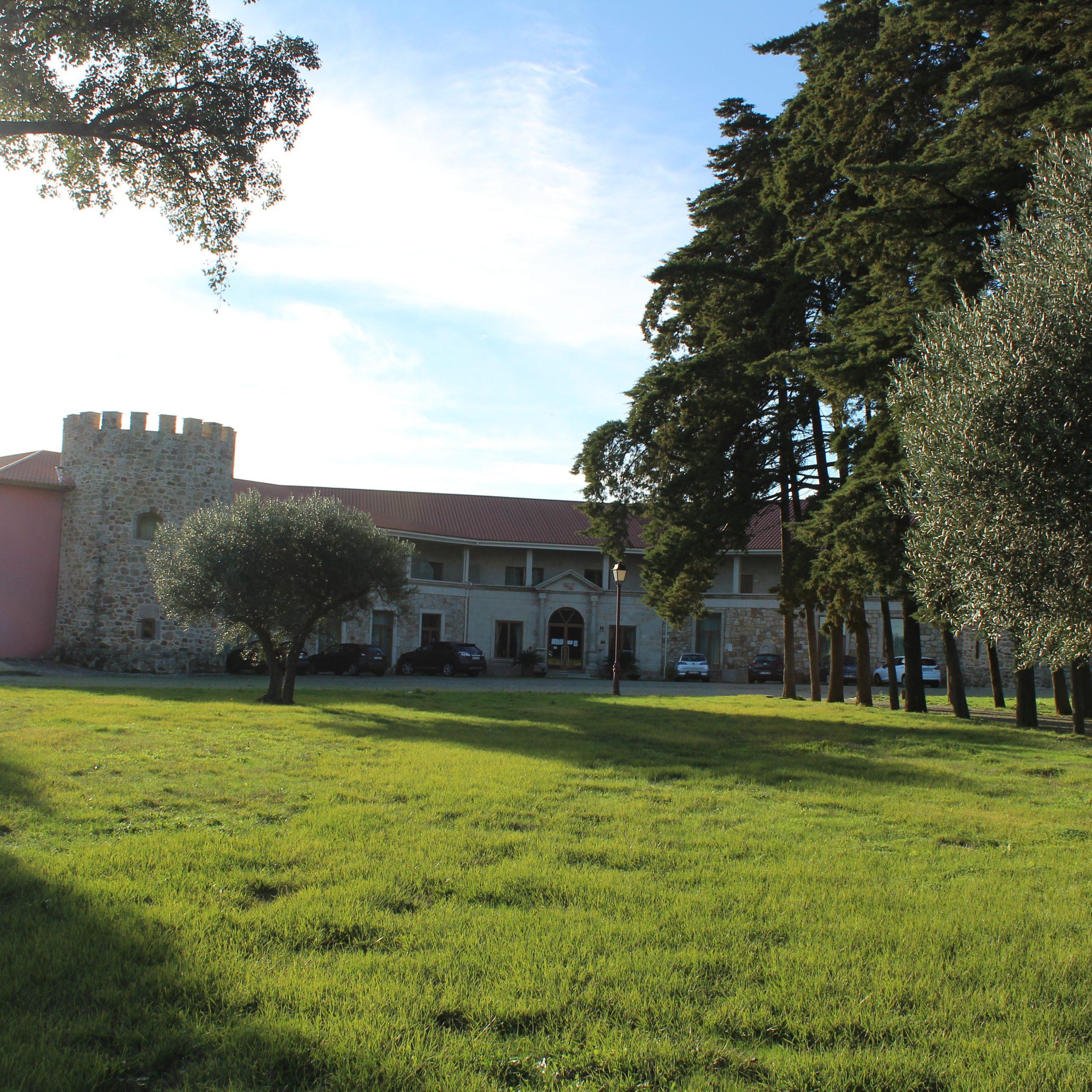 Palace Hotel & SPA Termas de S. Tiago